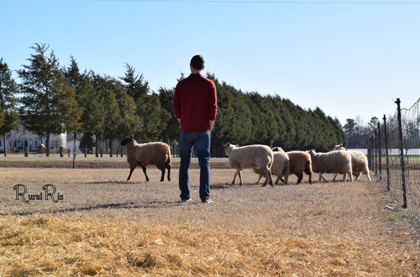 alec wool