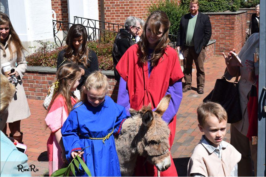 kids and donkey